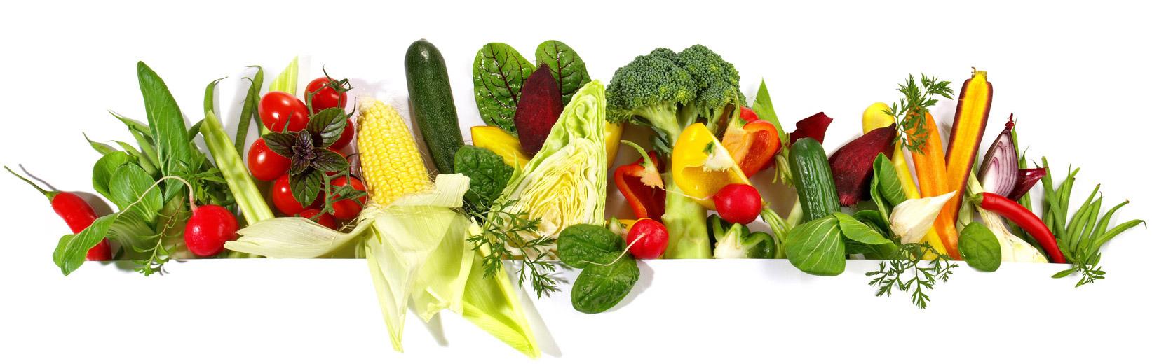 Ernährungsberatung dresden